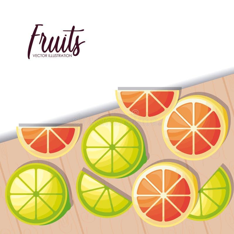 Fresh oranges with lemons sliced fruits stock illustration
