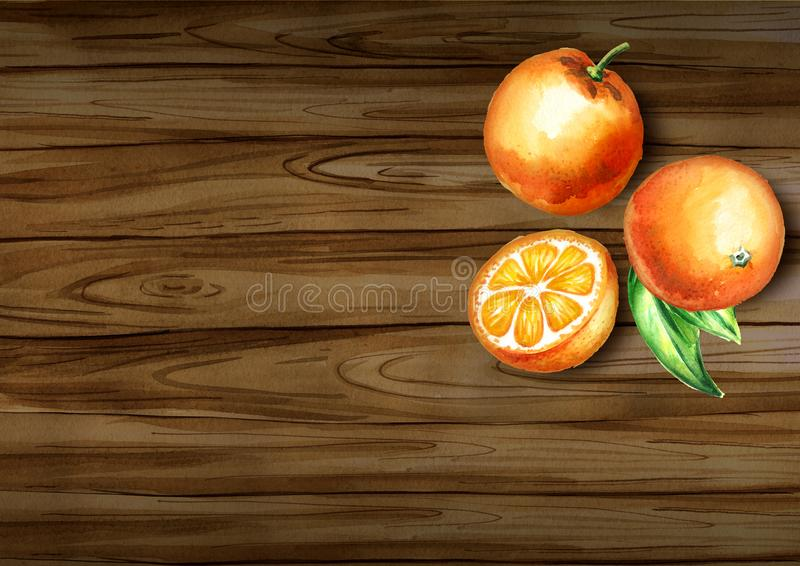 Fresh oranges top view on the border. Natural organic food. Watercolor hand drawn background stock photos