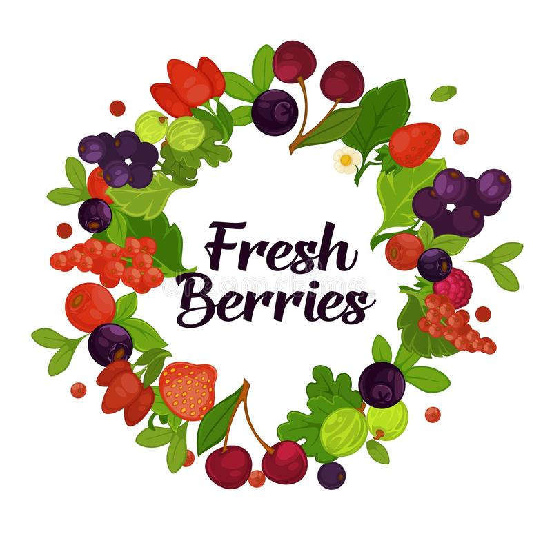 Fresh organic berries with leaves in circle promotional poster stock illustration