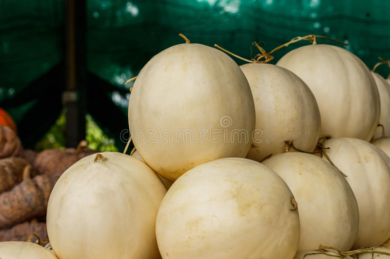 Fresh organic cantaloupe melons stacked on table for sale at local farmers market stock photo