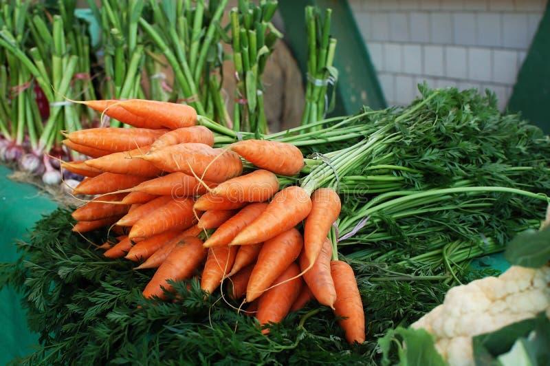 Download Fresh Organic Carrots Stock Photos - Image: 19091113