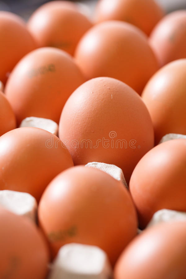Fresh and organic chicken eggs packed in holders royalty free stock image