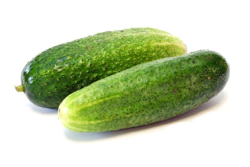 Fresh organic cucumber on white background stock photo