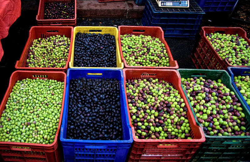 Download Fresh Organic Different Types Of Olives Royalty Free Stock Image - Image: 17242096