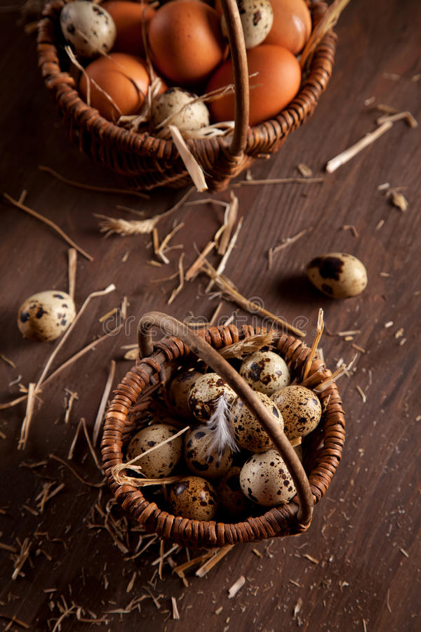 Fresh organic eggs in the basket. Rustic still life stock photos