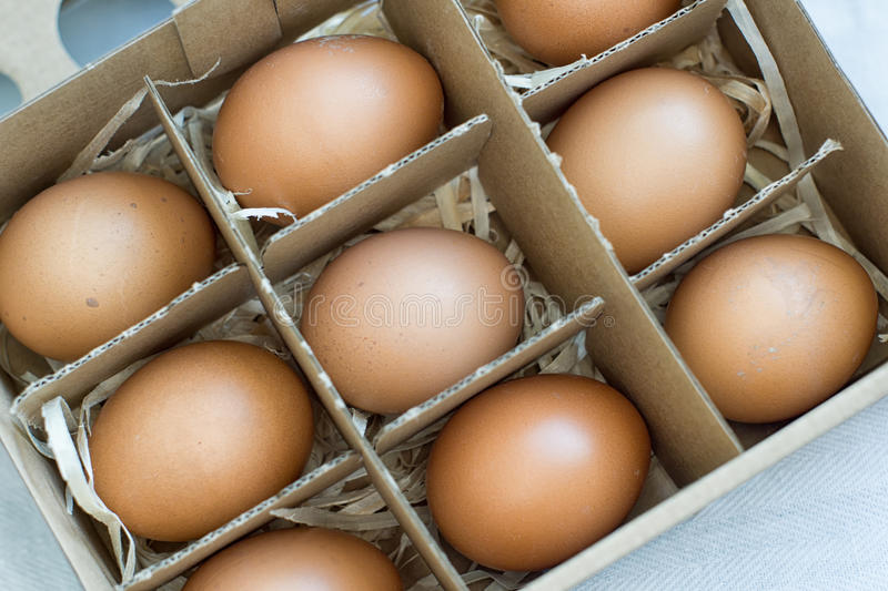 Fresh organic eggs. In cardboard box royalty free stock photography