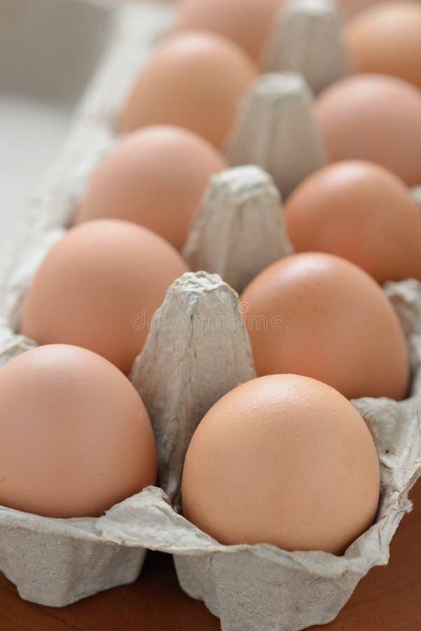 Fresh Organic Eggs. Close up of fresh Organic Eggs royalty free stock images