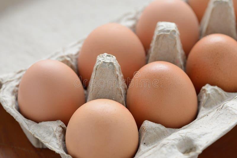 Fresh Organic Eggs. Close up of fresh Organic Eggs royalty free stock photos