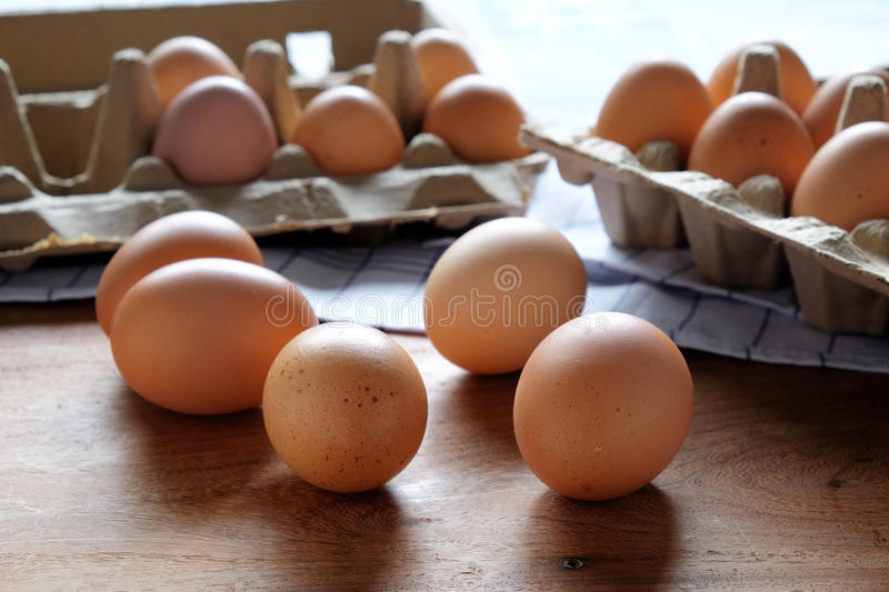 Fresh and organic eggs from organic egg farm, healthy food product in paper box container. stock image