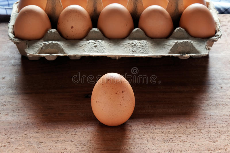 Fresh and organic eggs from organic egg farm. Fresh and organic eggs from organic egg farm, healthy food product in paper box container stock images