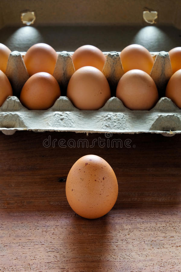 Fresh and organic eggs from organic egg farm, healthy food product in paper box container. royalty free stock image