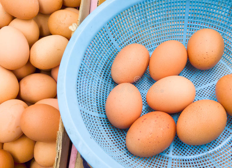 Fresh organic eggs. Fresh organic eggs in the plastic basket for selling at the local market,Thailand stock photos