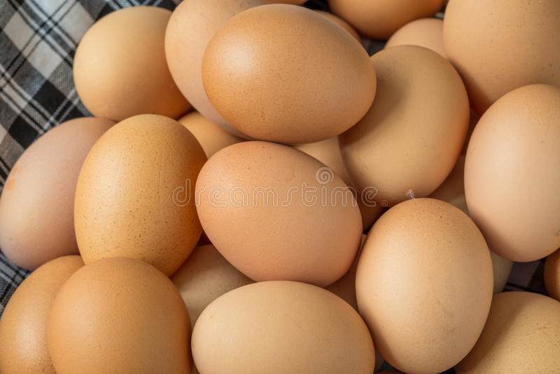 Fresh organic eggs. Pot on tablecloths royalty free stock photography