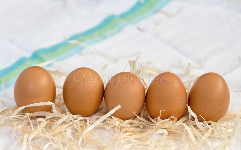 Fresh organic eggs. On straw with white clotf in background royalty free stock photo