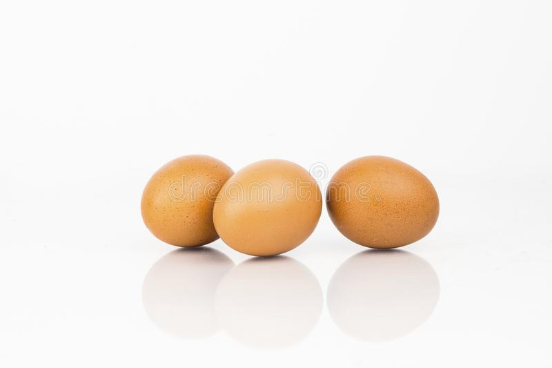 Fresh Organic Eggs On White Background. With Reflection stock images
