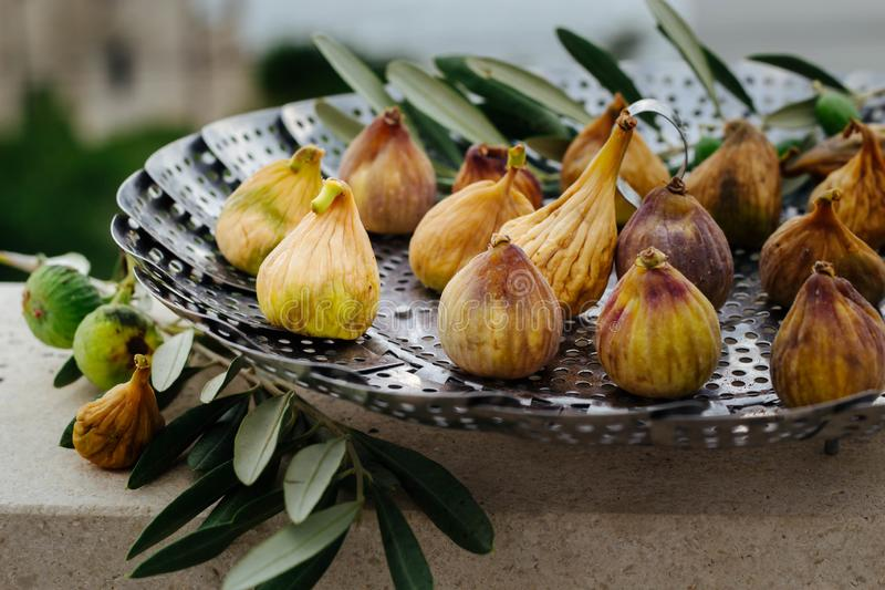 Fresh, organic figs drying in the summer stock photo