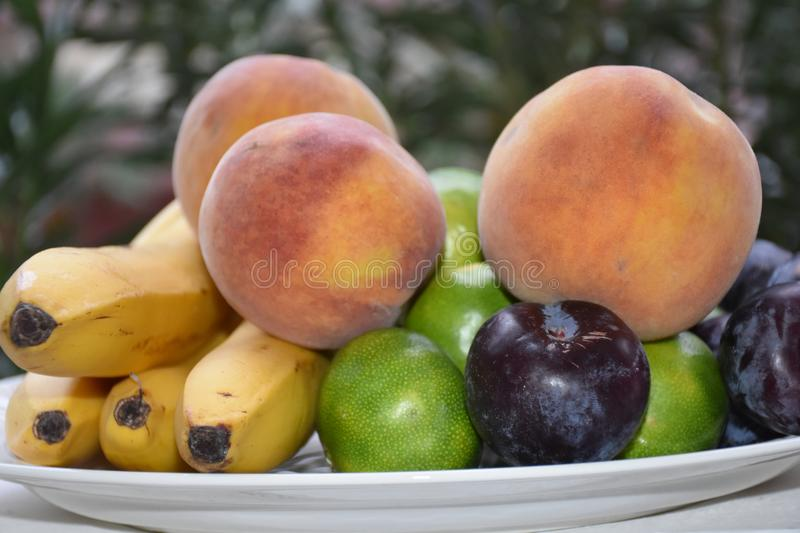 Fresh organic fruits on the plate. Sunny day. River bank royalty free stock image