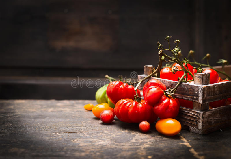 Fresh organic garden tomatoes in vintage box on rustic table over dark wooden background. royalty free stock images