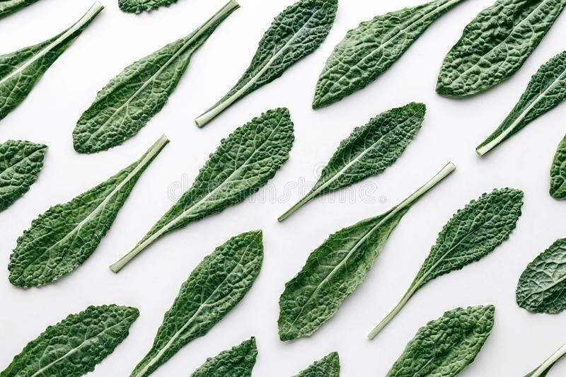 Fresh organic green kale leaves pattern on a white background royalty free stock photography