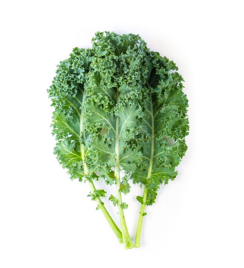 Fresh organic green kale leaves pattern on a white background. stock image