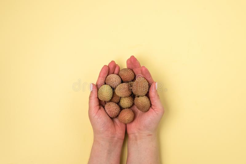 Fresh Organic Lychee Fruit in a Yellow Background Tasty Fruits Female Hand Holding Lychee Top View stock images