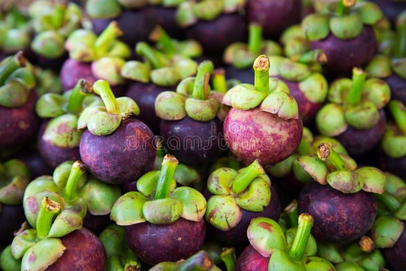 Fresh organic mangosteen Thai fruit in market thailand. royalty free stock photo
