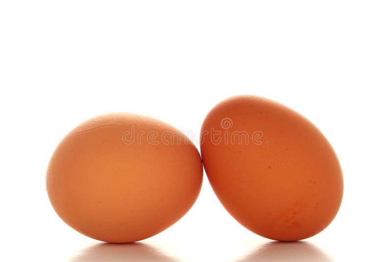 Fresh Organic and Natural Free Range Brown Eggs stock photography