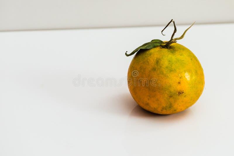 Fresh organic Orange fruit. Isolated on white background royalty free stock photography