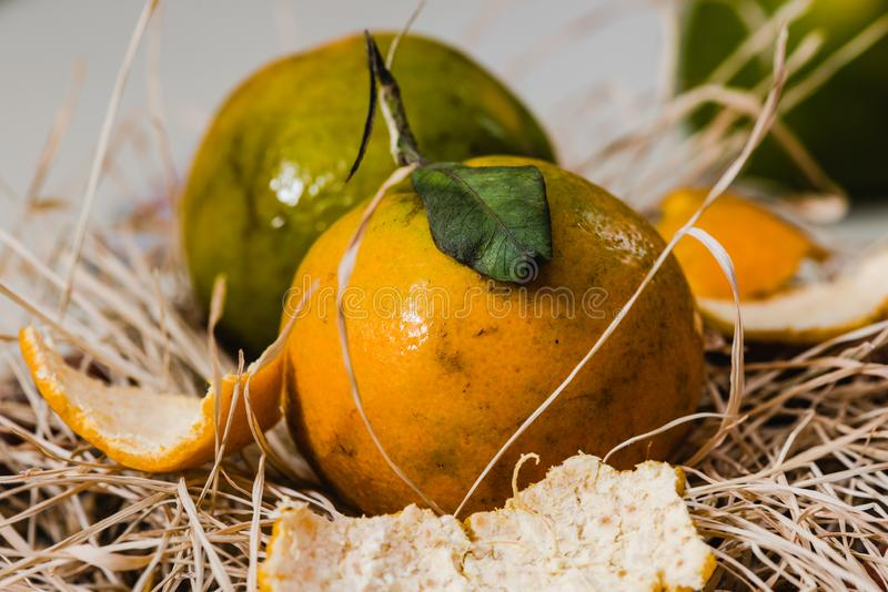 Fresh Orange fruits and pulp. Fresh Organic Orange fruits with pulp and grasses stock photo