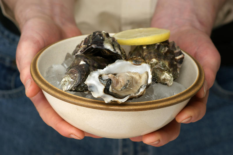 Fresh And Organic Oyster In A Bowl Royalty Free Stock Photo