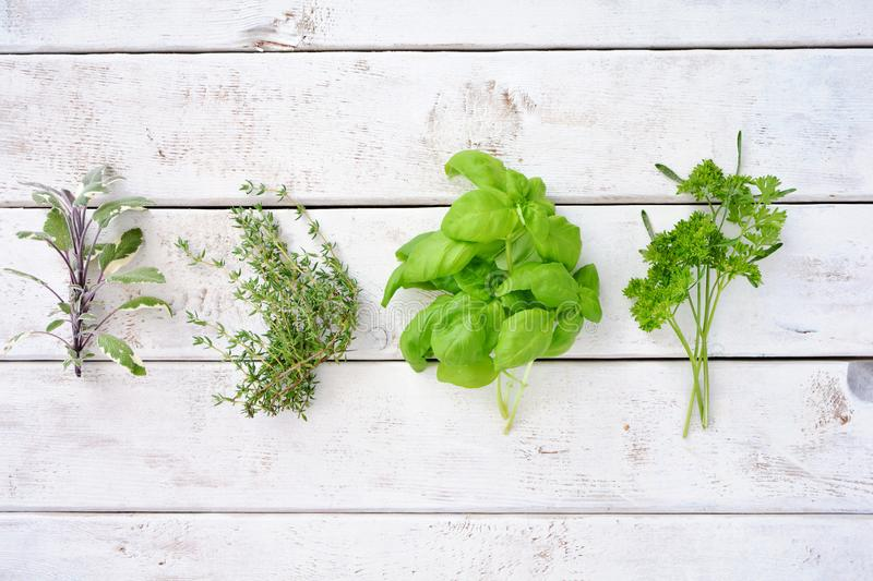 Fresh organic picked herbs top view royalty free stock photos