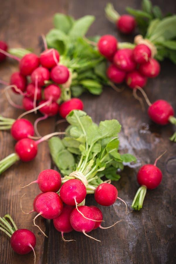Fresh organic radishes royalty free stock photography