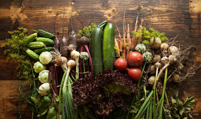 Fresh organic raw vegetable food. Natural agriculture farm, healthy harvest.  stock photo