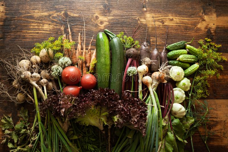 Fresh organic raw vegetable food. Natural agriculture farm, healthy harvest.  royalty free stock images