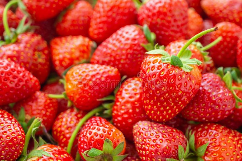 Fresh organic red ripe Strawberry fruit background closeup royalty free stock photos