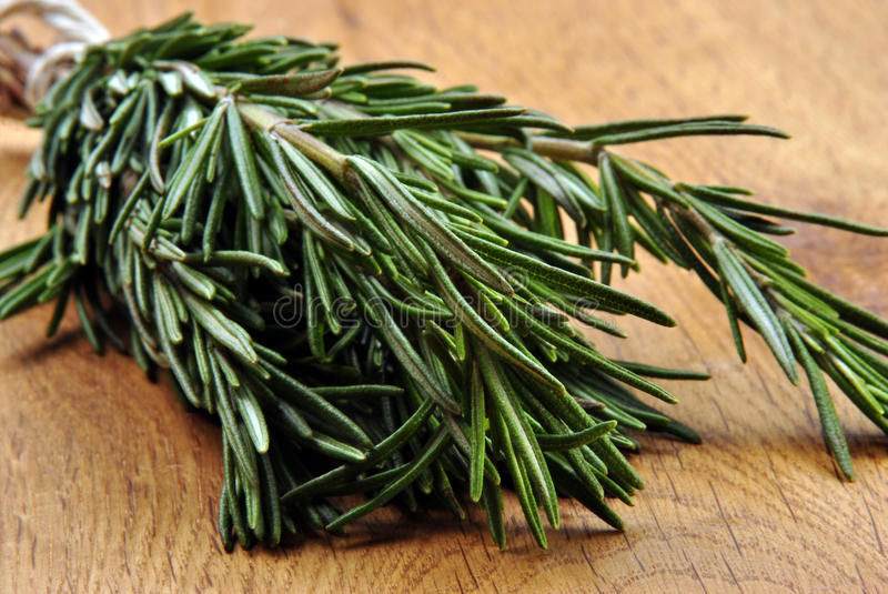 Download Fresh Organic Rosemary From The Garden Stock Photo - Image: 17310642