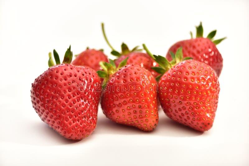 Fresh organic strawberries isolated on white background royalty free stock photography