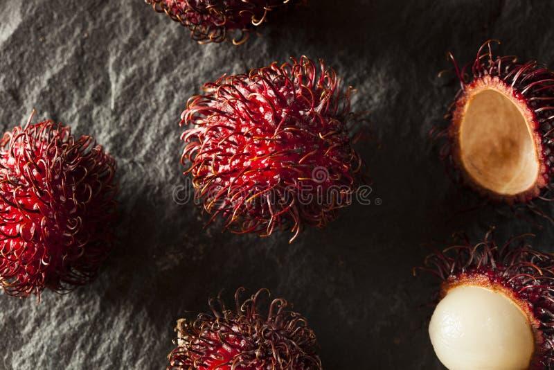 Fresh Organic Tropical Rambutan stock images