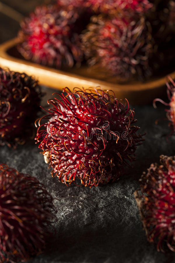 Fresh Organic Tropical Rambutan stock image