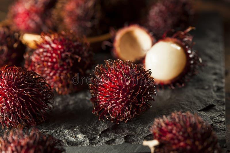 Fresh Organic Tropical Rambutan royalty free stock photos