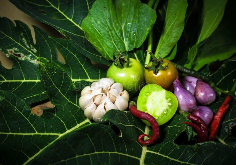 Fresh organic vegetabales on papaya stock photography