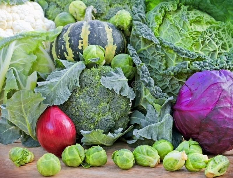 Fresh organic vegetables. Brussel-sprouts, broccoli, kale, cauliflower, red-cabbage and red-onion stock image