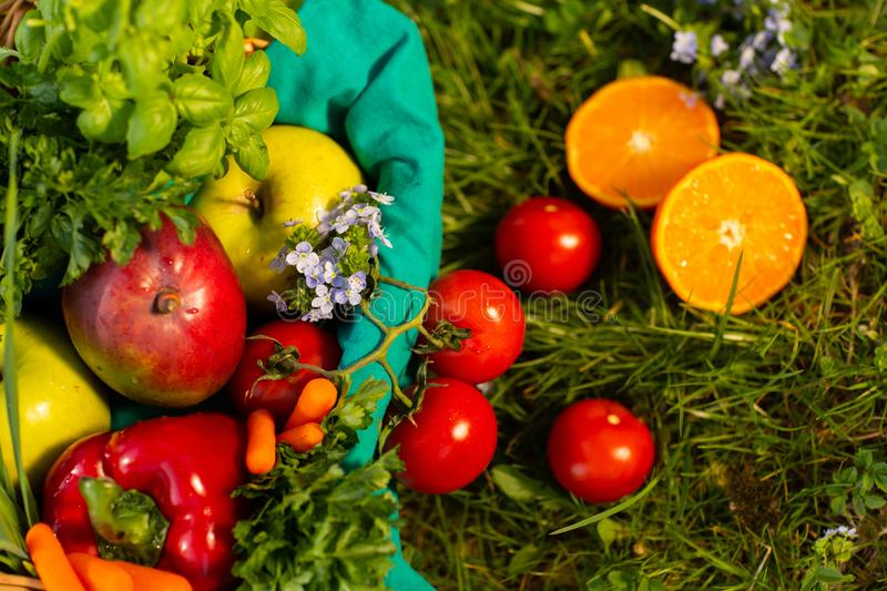 Fresh organic vegetables in wicker basket in the garden. Top view stock photos
