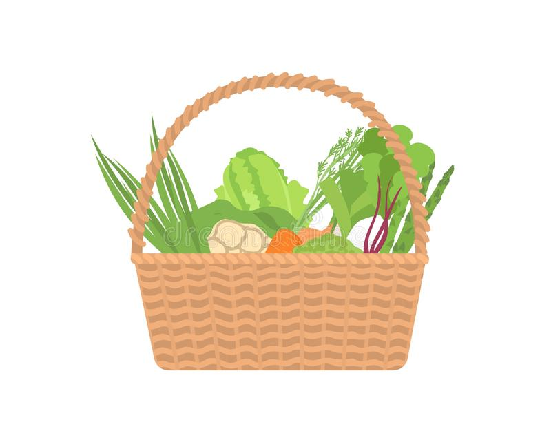 Fresh organic vegetables in wicker basket isolated on white background. Ripe gathered natural crops in crate. Harvest vector illustration