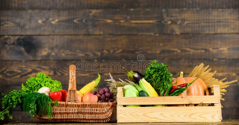 Fresh organic vegetables in wicker basket and wooden box. Fall harvest concept. Vegetables from garden or farm on wooden royalty free stock photo