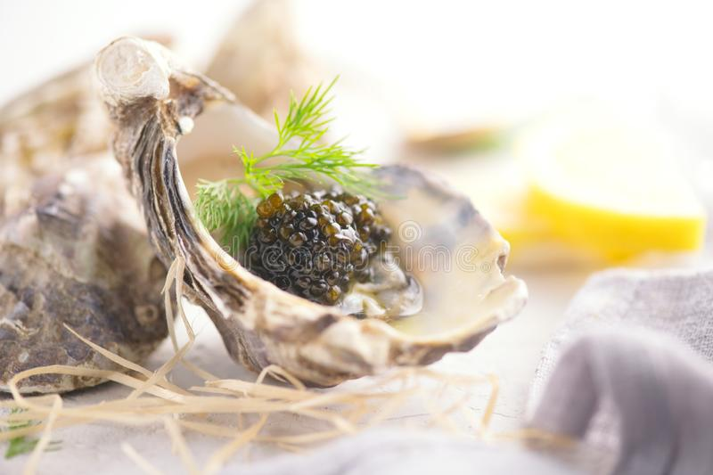 Fresh oysters with black caviar. Opened oysters with black sturgeon caviar and lemon, Gourmet food in restaurant. Delicatessen. Dish close-up stock photography