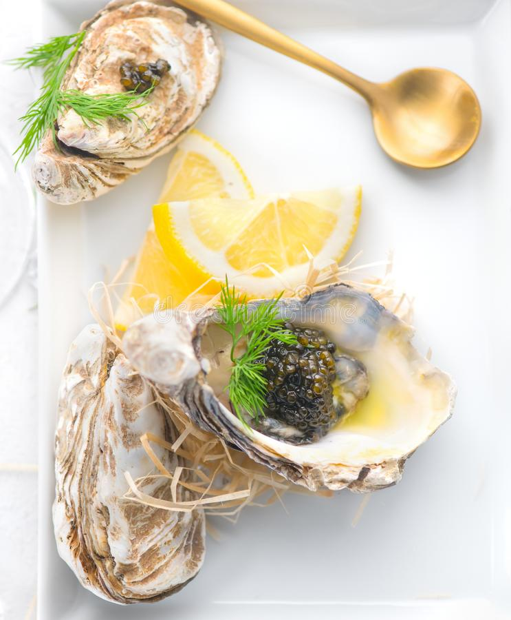 Fresh oysters with black caviar. Opened oysters with black sturgeon caviar and lemon, Gourmet food in restaurant. Delicatessen. Dish. Served table. Top view royalty free stock photos