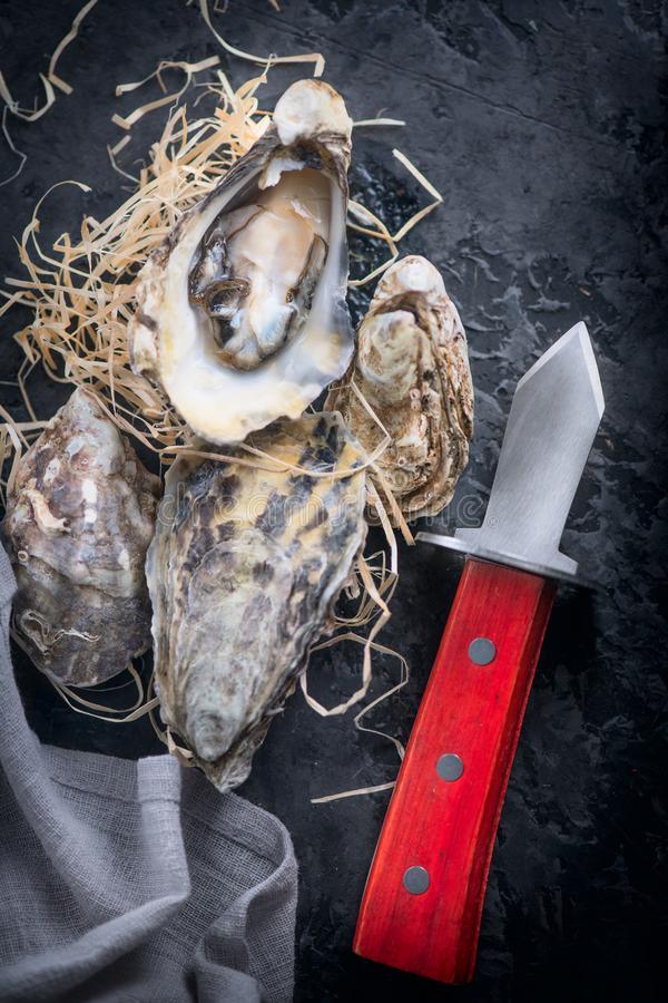 Fresh Oysters close-up with knife, served table with oysters and lemon. Healthy sea food. Oyster dinner in restaurant. Dark background. Seafood, Gourmet food stock image