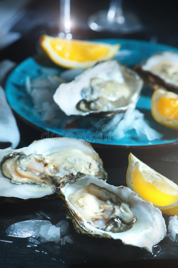 Fresh oysters closeup on blue plate, served table with oysters, lemon in restaurant royalty free stock image