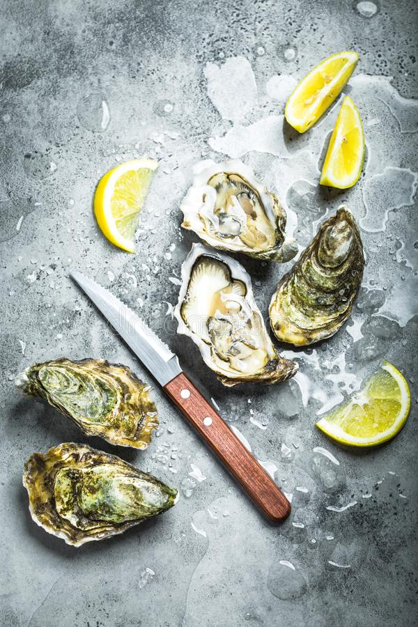 Fresh oysters on ice royalty free stock photo